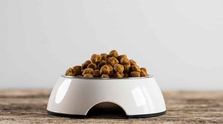 Orijen Dog Food Reviews: Recall History, Ingredients & More