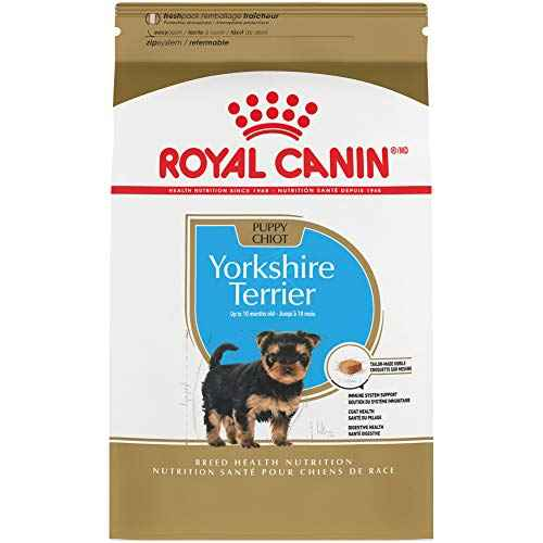 Royal Canin Yorkshire Terrier Puppy Breed ...