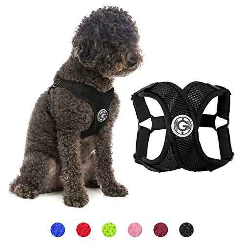 Gooby Dog Harness - Black, Small - Comfort X…